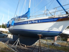 SeaFrog-Jan2016-A087